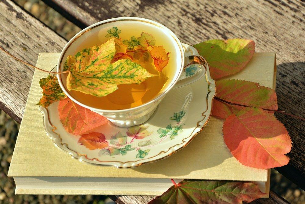 La alimentación en otoño