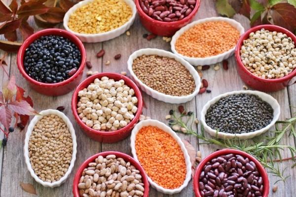 protein-legumes.jpg