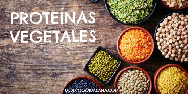 legumbres-proteina-vegetal.jpg