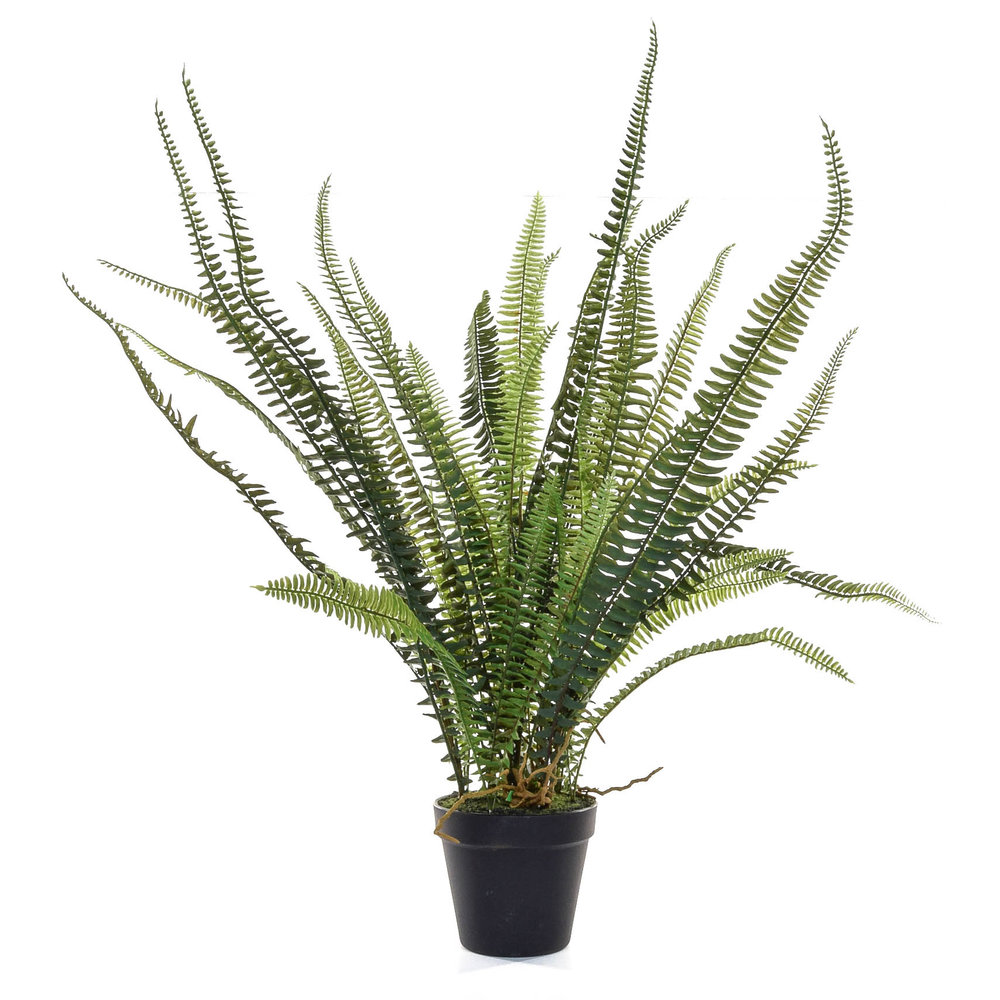 Credit: MiaFleur. Artificial Forest Fern. £52.  http://www.miafleur.com/artificial-forest-fern