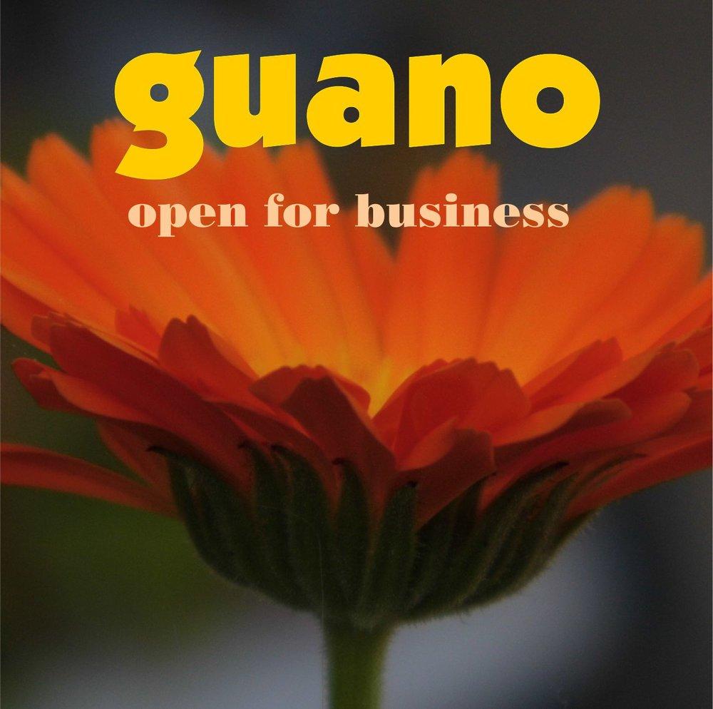 http://store.cdbaby.com/cd/guano3