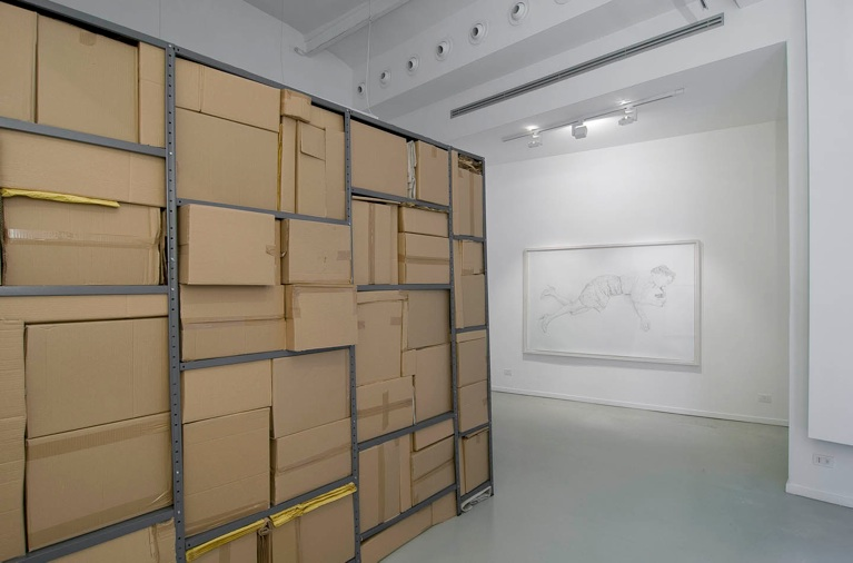 installation view with the drawing  Trace  from   Apparent Death   series