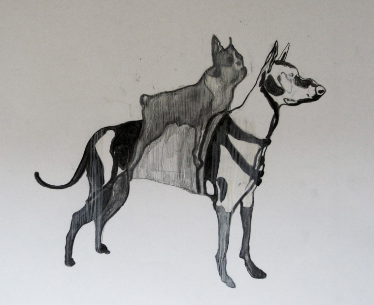 BLACK AND WHITE DOGS 2010 Pencil and charcoal on paper, dimensions: 59.4*42 cm. private collection