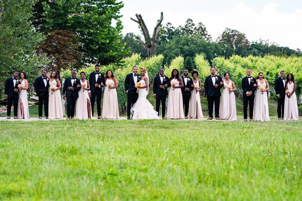 034-christopher-jason-studios-morais-vineyard-winery-virgina-wedding-african-american-bride-and-groom.jpg