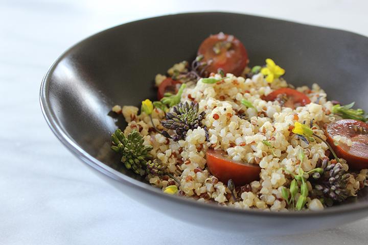 PlatedColor.com Quinoa and Raab Salad10