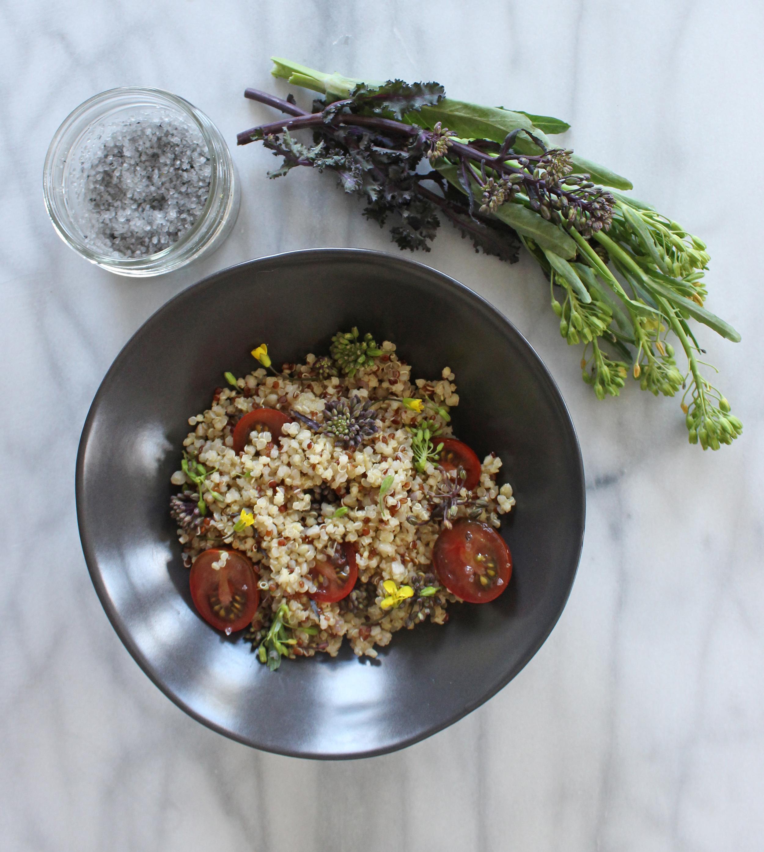 PlatedColor.com Quinoa and Raab Salad6