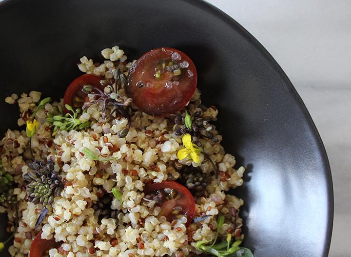PlatedColor.com Quinoa and Raab Salad7