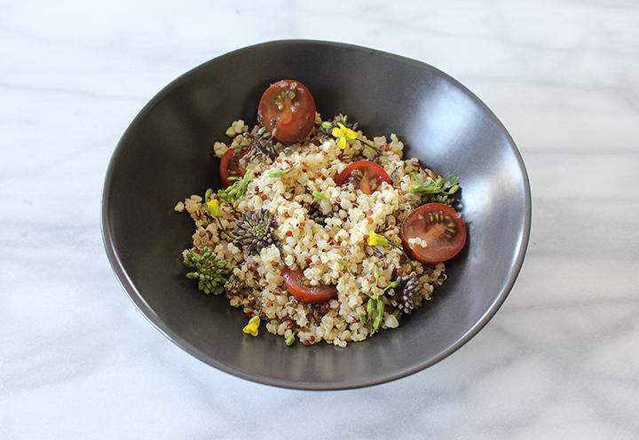 PlatedColor.com Quinoa and Raab Salad9-720