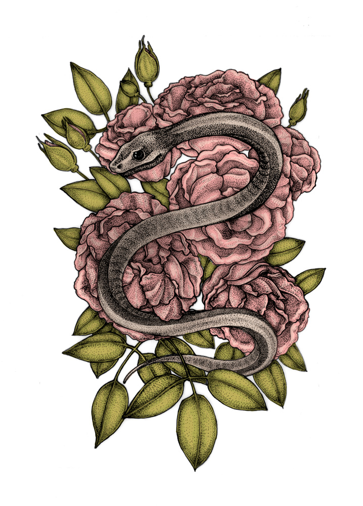 serpent, roses