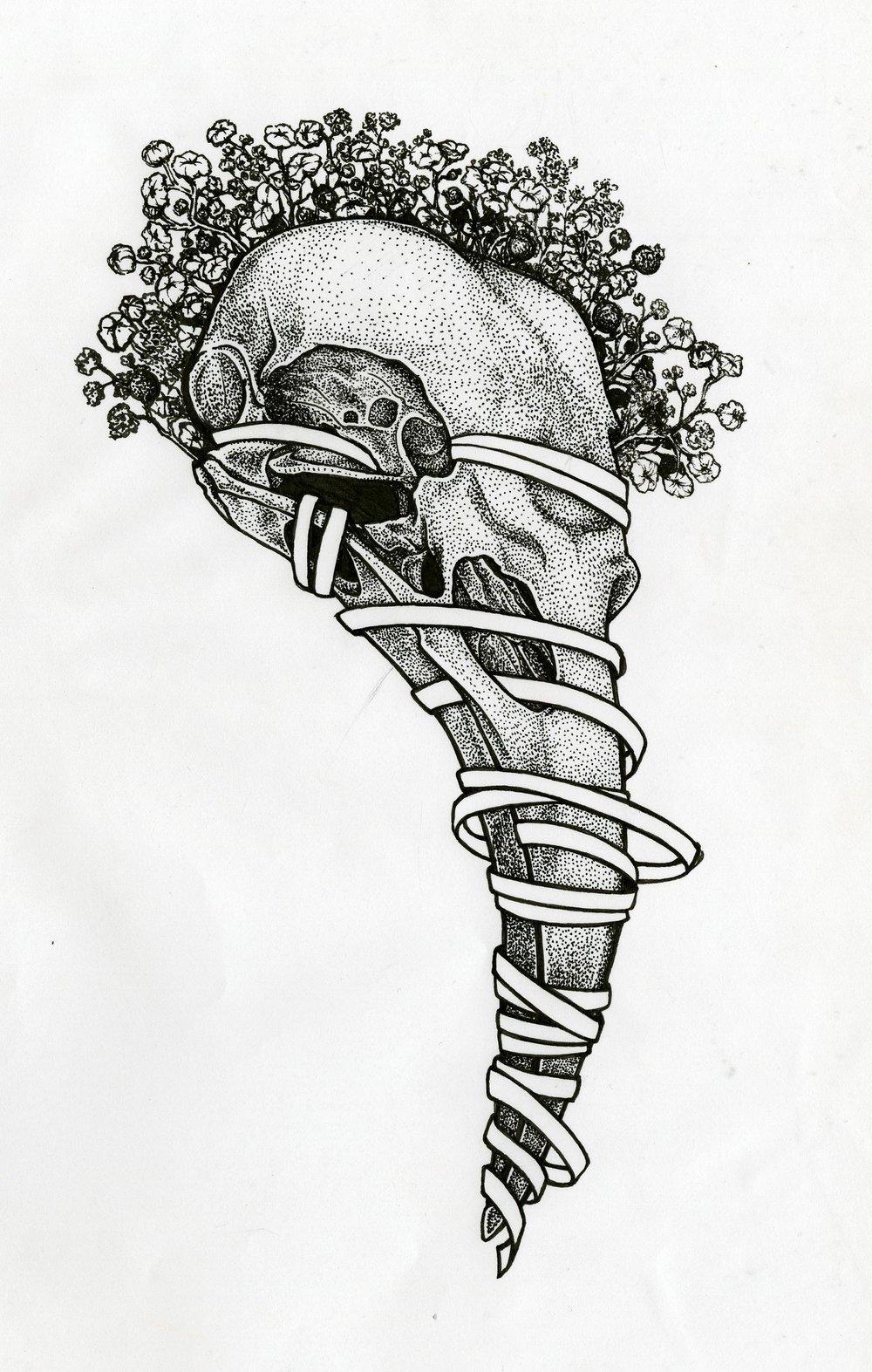 crow-skull001.jpg