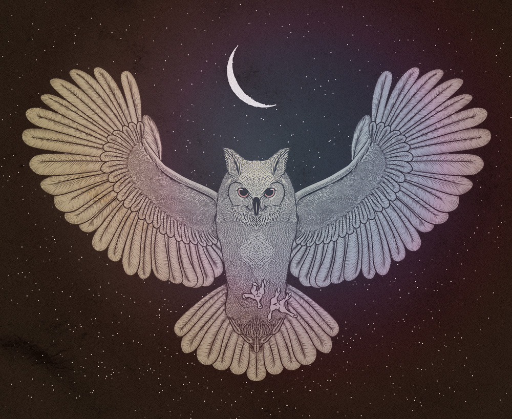 cosmic-owl-update-for-web.jpg