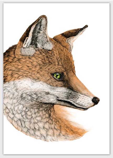 folded-card-fox-portrait.png