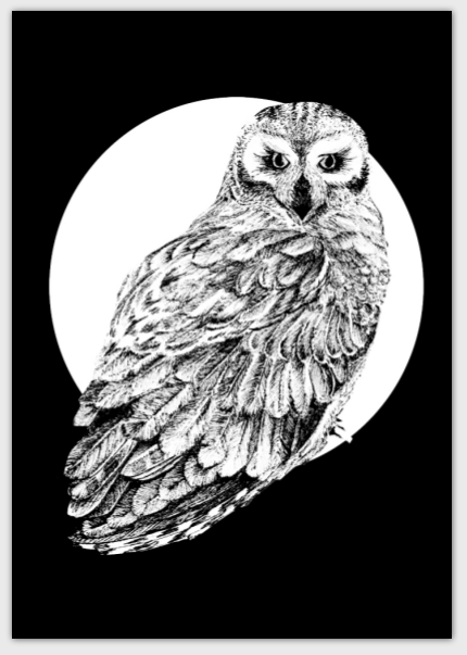 folded-card-full-moon-owl.png