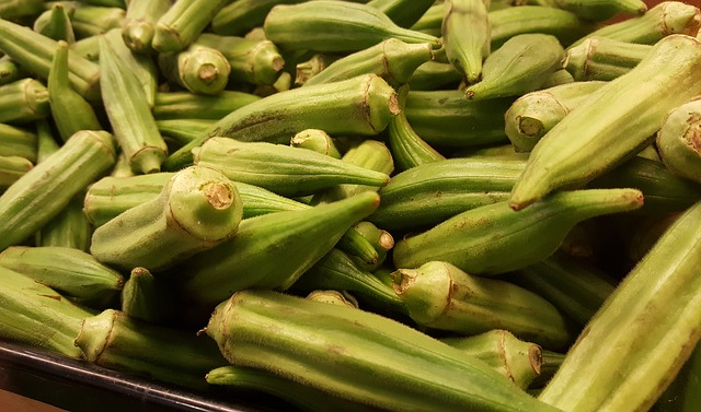 Fiber Friendly - Okra's soluble fiber helps maintain a healthy blood glucose level by slowly allowing glucose to filter into the blood during digestion.The insoluble fiber helps keep your bowels regular.Some of the polysaccharides found in the fiber of younger okra pods help stop unhealthy bacteria from surviving in the GI tract, which promotes a healthy stomach and colon.