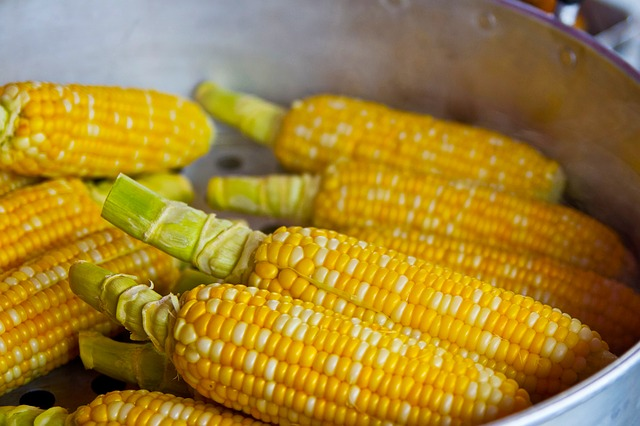 Whole Grain - Although it's often referred to as a vegetable, corn on the cob is actually a whole grain, which means that all three parts of the grain are present; the bran, germ and endosperm.