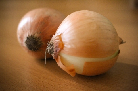Surprise! - Studies have shown that regular daily onion consumption by women 50 and over, increases overall bone density and, lowers the risk of hip fracture.