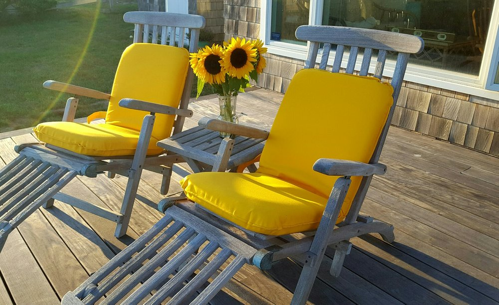 carolinesunfloweryellowseats.jpg