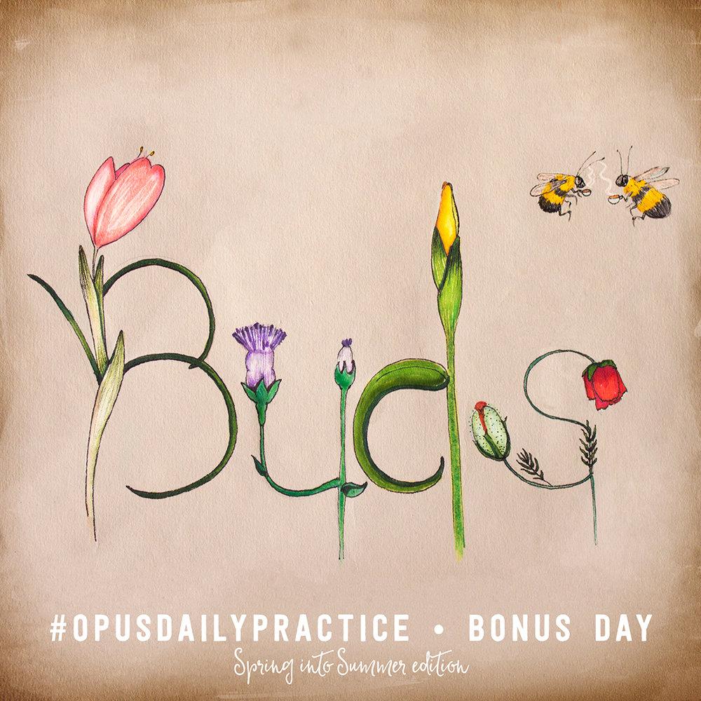 Buds . Pen, colour pencil, and watercolour illustration.
