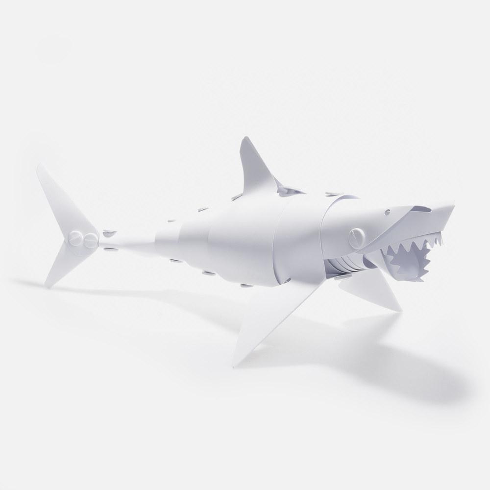 shark-1-test.jpg