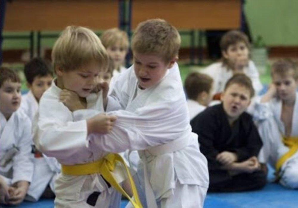 "<p><strong><p><strong></strong>KIDS JUDO<a href=""http://www.rakuenjudo.com.au/kids-judo"">More →</a></p></strong><a href=""http://www.rakuenjudo.com.au/kids-judo""></a></p>"