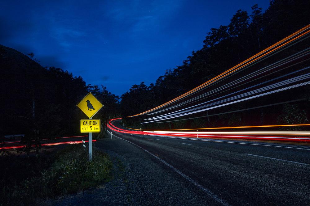 Kea warning signs for traffic