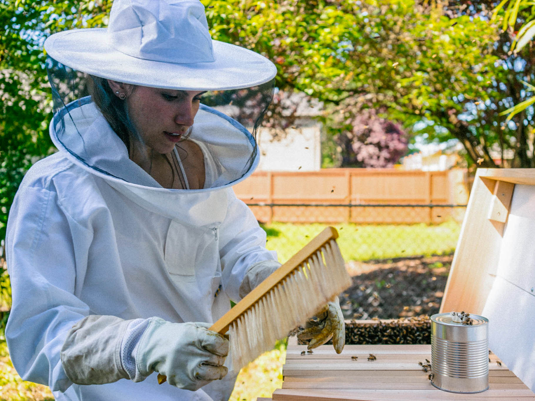 FABQs: When Should I Start My Hives? - by Bee & Bloom