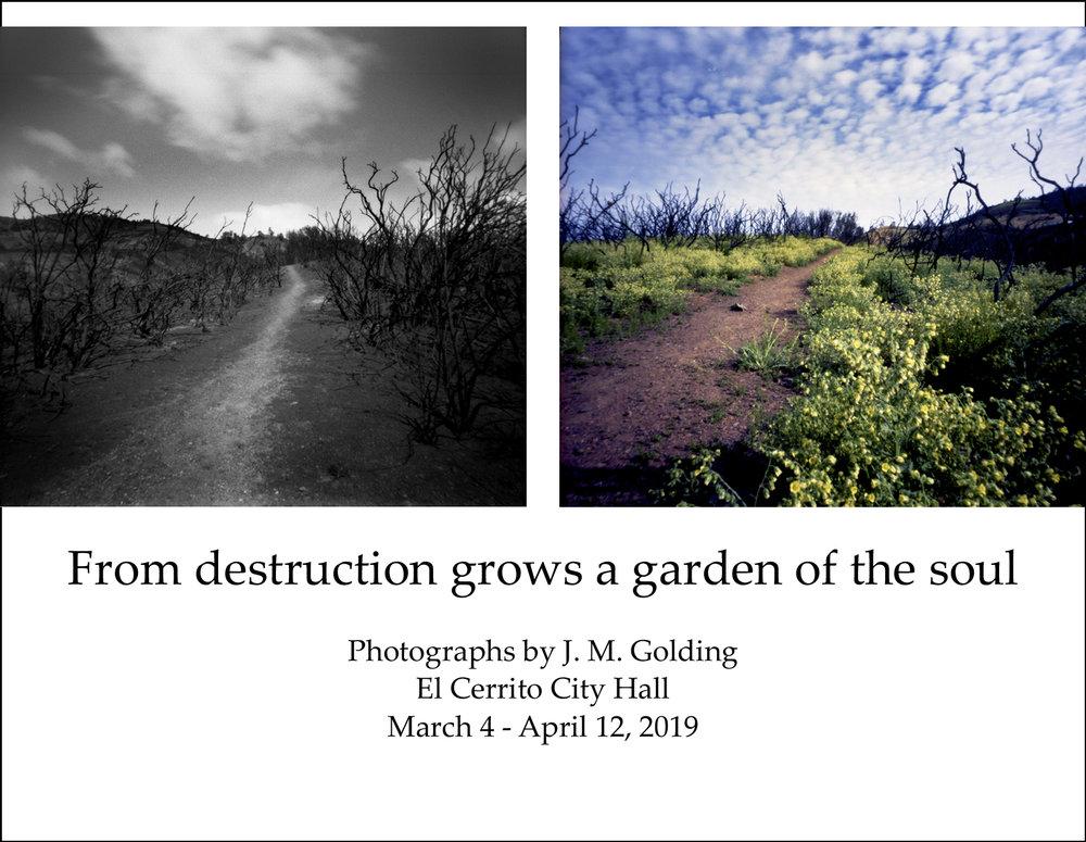 From Destruction at El Cerrito Cit Hall - jpg postcard front.jpg