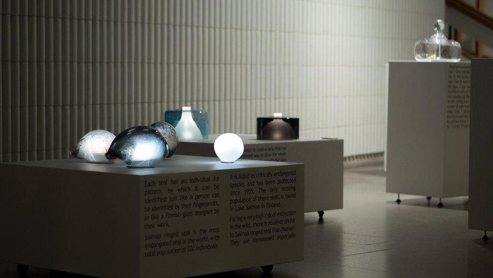 Transparency // Images: Niko Koskinen / Aalto University