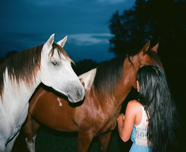 Got some film back today 🐎 #mamiya7 #ektar100 #mediumformat