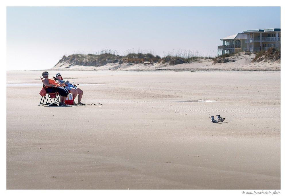 Last sunbath of the season? 85mm on full-frame. 1/2500 sec, f/4, ISO 100