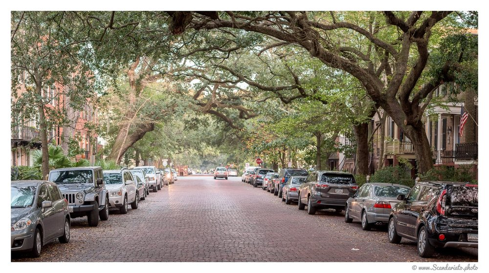 Street in the Historic District. 85mm on full-frame. 1/200 sec, f/4, ISO 600 (panorama)