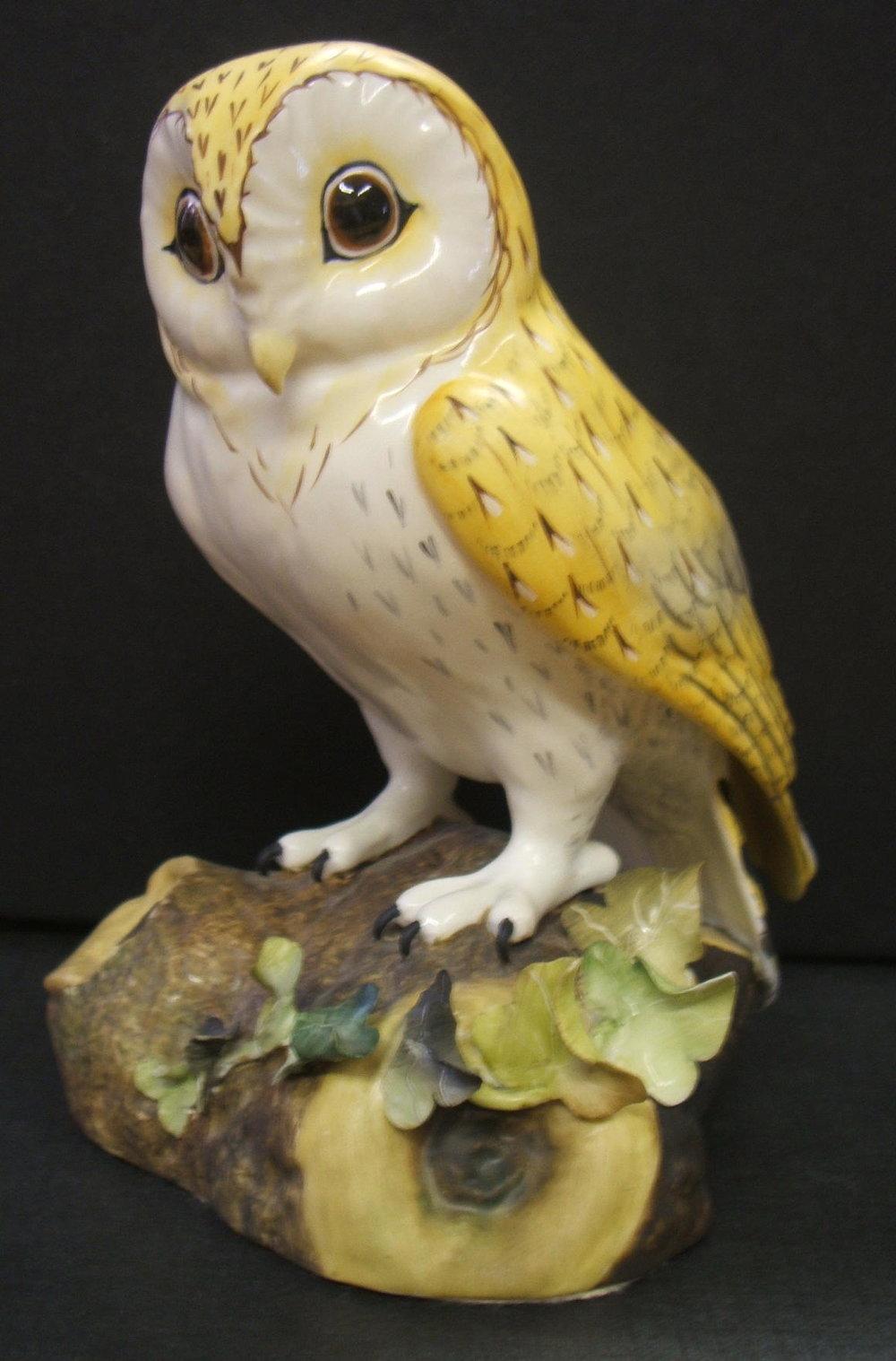 Barn Owl F551