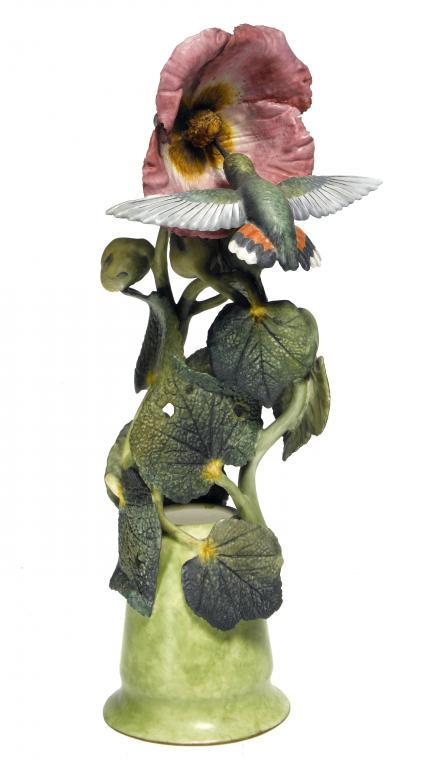 Rufens Hummingbird