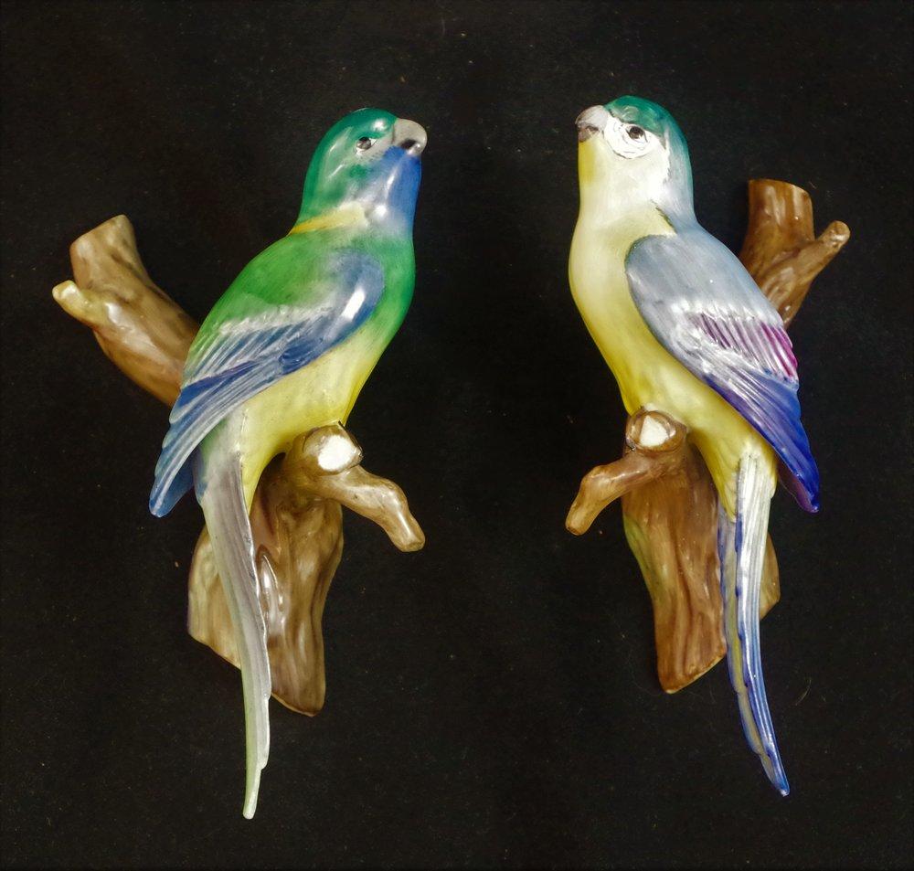 F557 Cloncurry Parrots