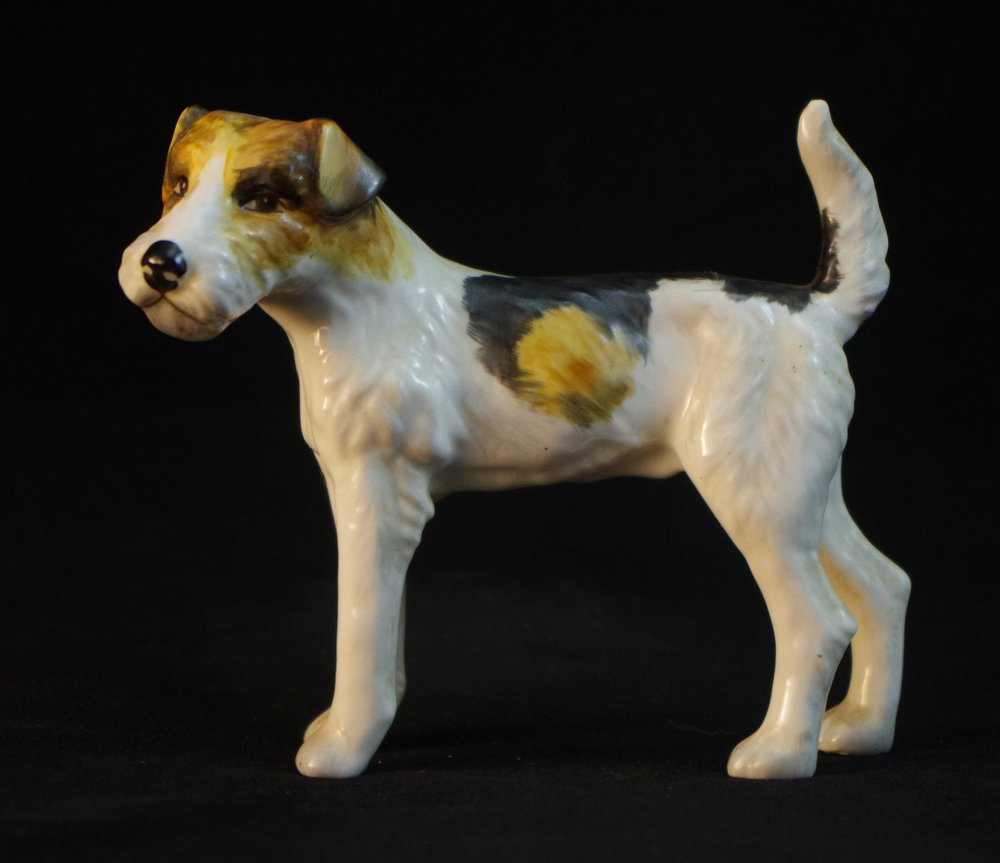 Fox Terrier F494