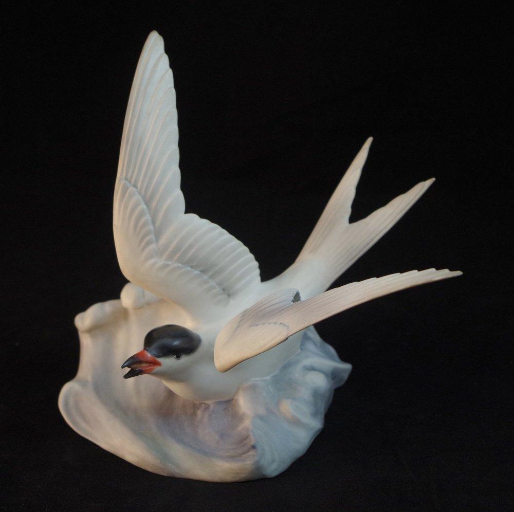 Tern F541