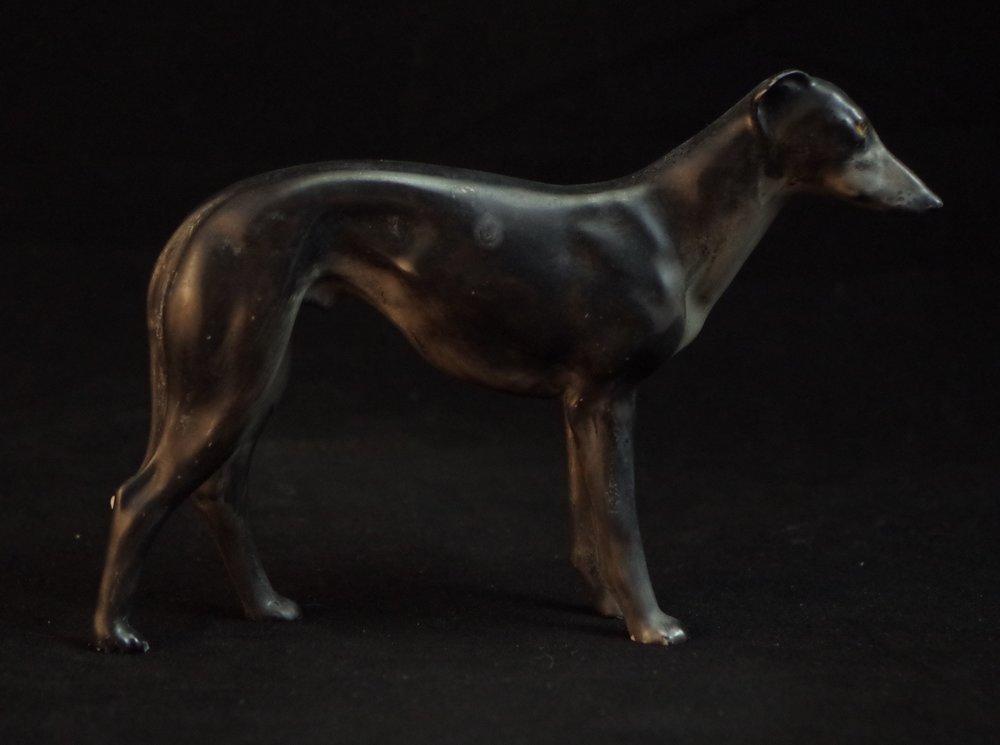 Greyhound F496