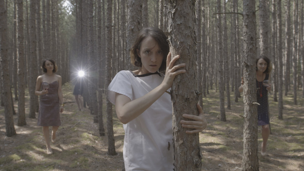 Empty Woods.jpg