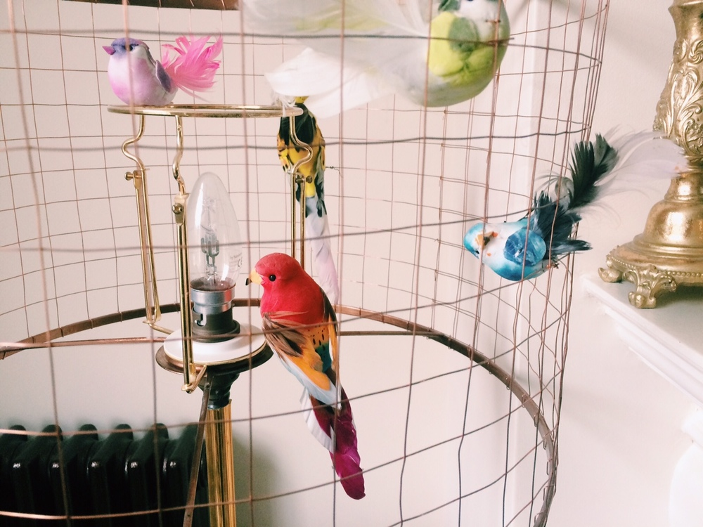 My DIY version of the Graham and Green Bird Cage Shade. Birds sourced from VV Rouleaux.