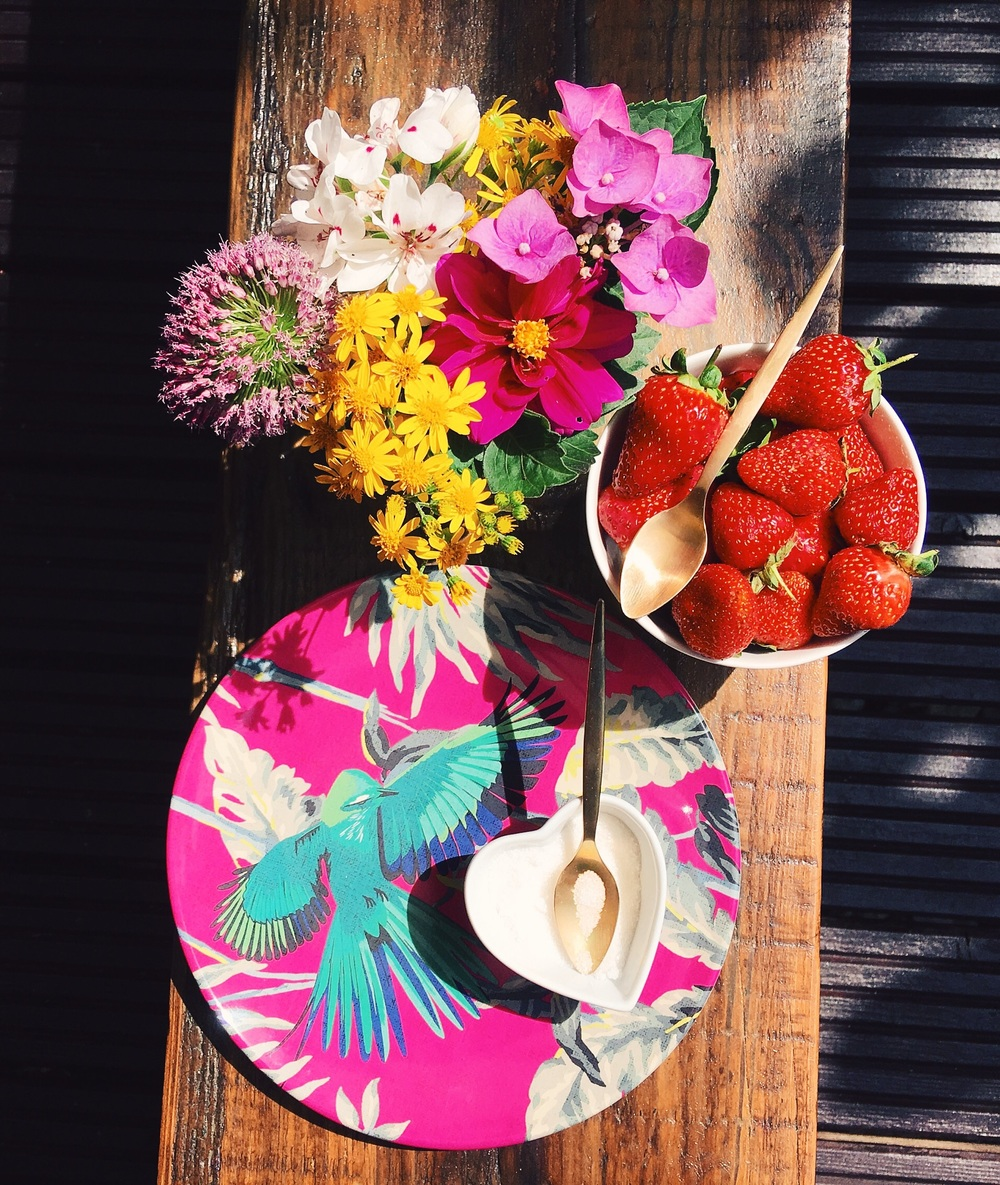 This beautiful melamine picnic plate is by Matthew Williamson for Debenhams .