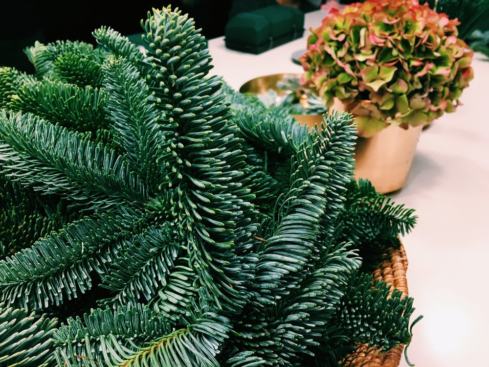 Chop your spruce into small, three shoot pieces.