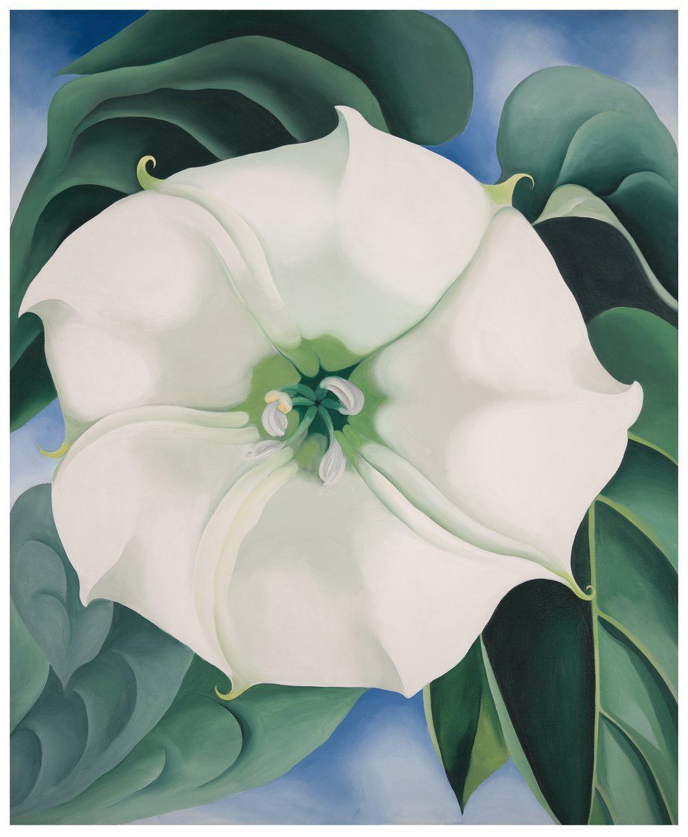 Georgia O'Keeffe, Jimson Weed/White Flower No. 1, 1932 Oil on canvas, 121.9 × 101.6 cm Crystal Bridges Museum of American Art, Bentonville, Arkansas © Georgia O'Keeffe Museum Photography by Edward C. Robison III