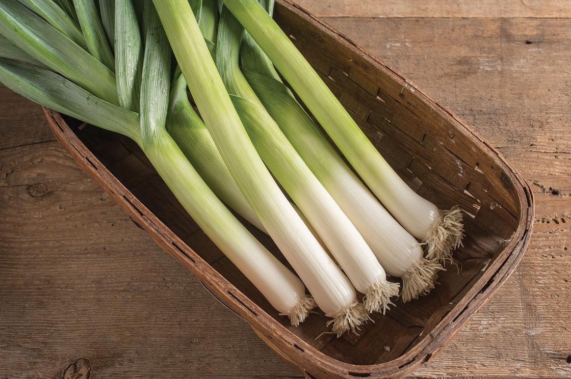 Leeks — Asbury Gardens Organically Grown Vegetable Seedlings