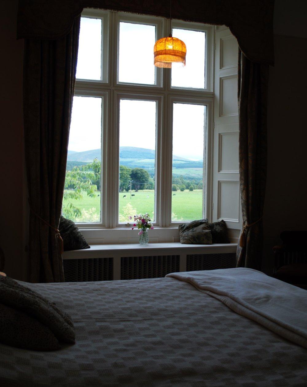 M Room (old).jpg