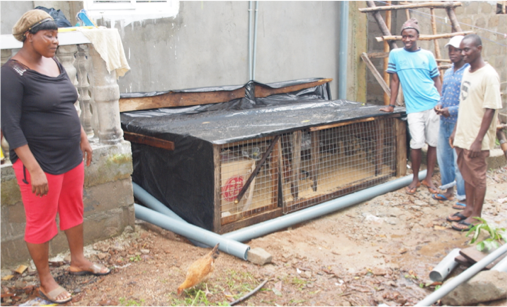 Below - Extra Mile staff with the new chicken coop - to offset high food prices in the local market