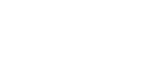 Lesley Villarreal Photography