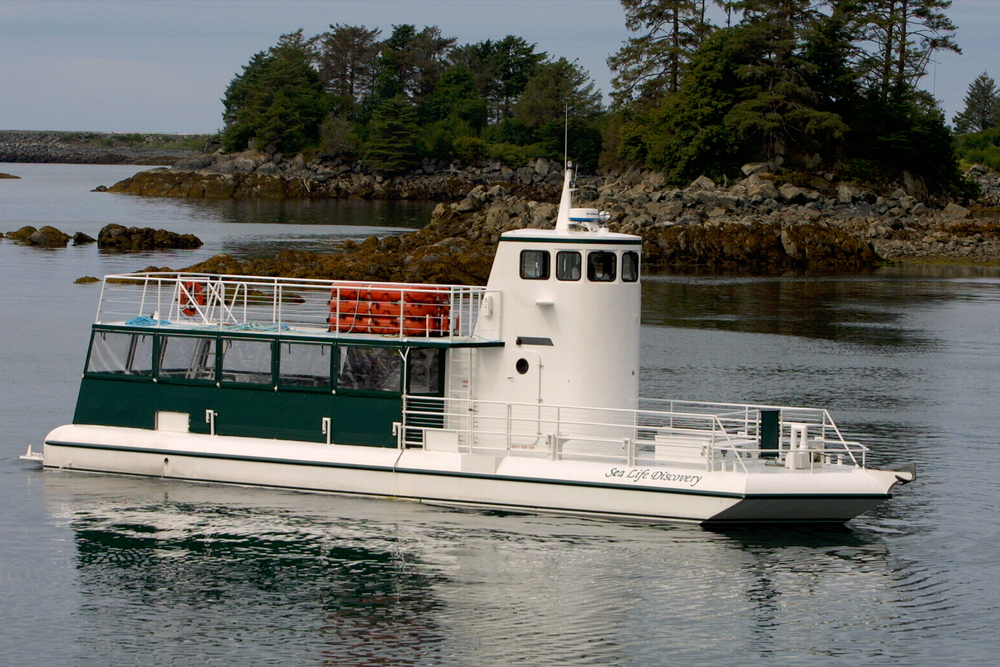 65' Semi Submarine for sale