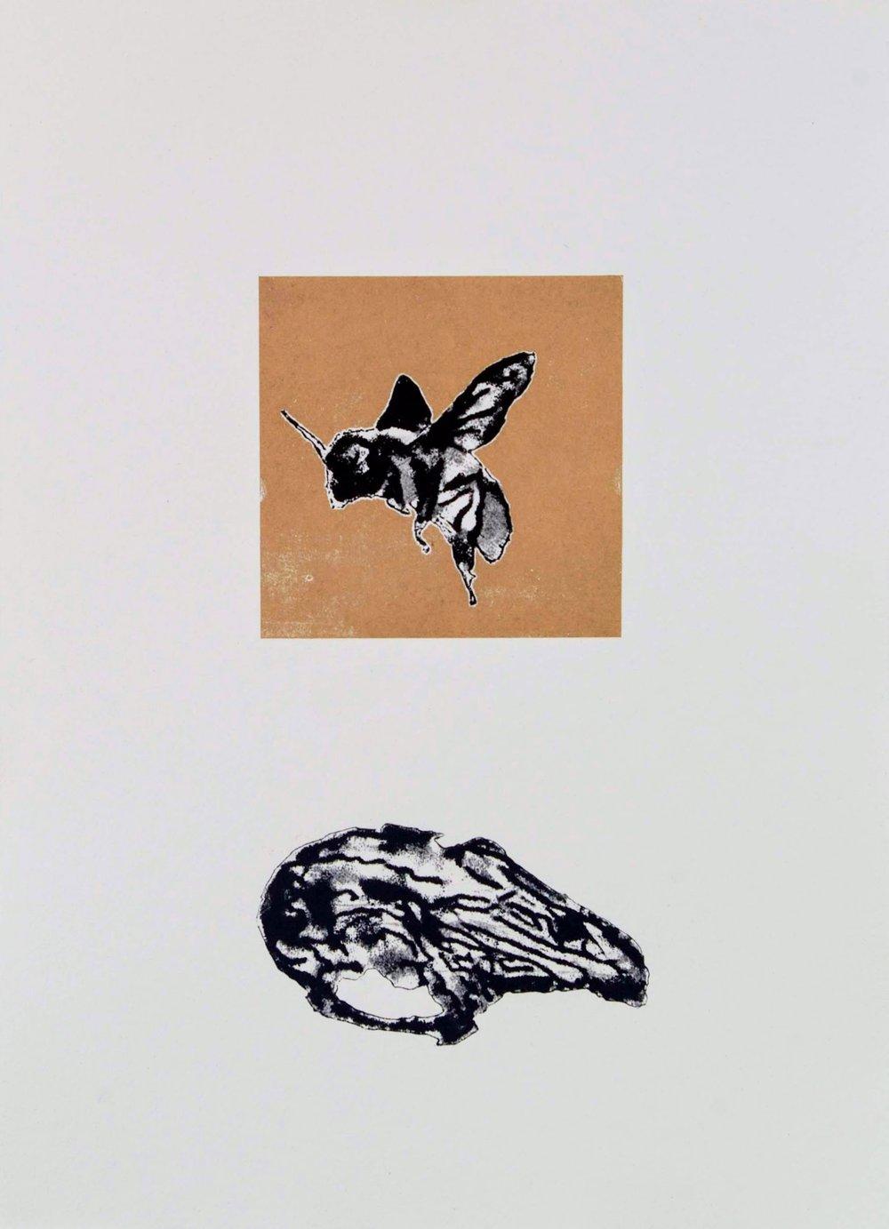 Rabbit Skull & Bee