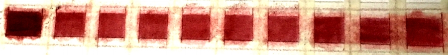 The full strength Permanent Red is in the first square on the left. The other squares are a half-tone of that color. You can see that the squares on the right are still too saturated and need to be lightened. Square #5 from the left is about right.