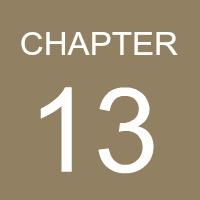 chapter-13-logo.jpg
